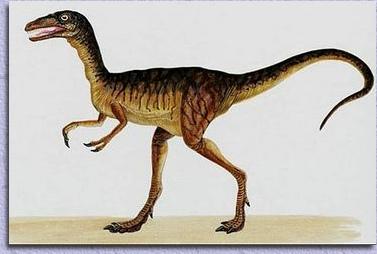Dinosaures dans les pyr n es - Liste dinosaures ...